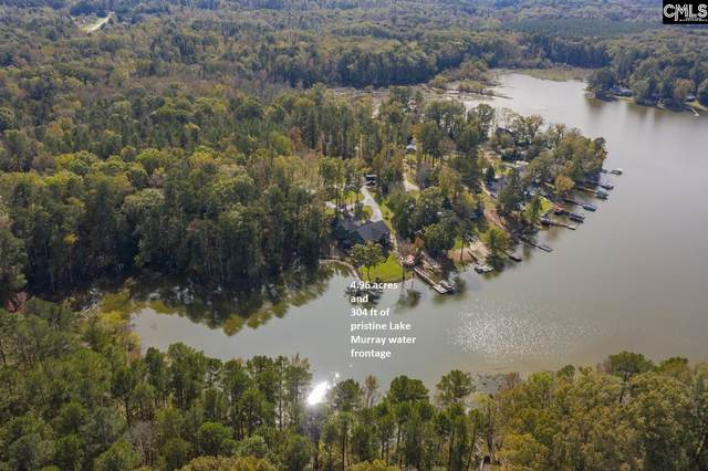 408 Horse Cove Road, Gilbert, SC 29054 (MLS #502514) :: Resource Realty Group