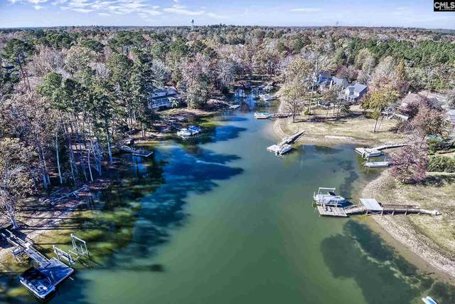 132 Rum Gully Lane, Chapin, SC 29036 (MLS #506220) :: Disharoon Homes
