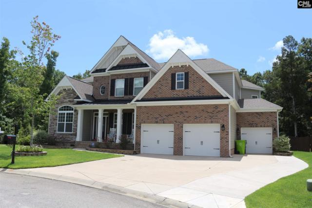 172 Kingship Drive, Chapin, SC 29036 (MLS #430458) :: Home Advantage Realty, LLC