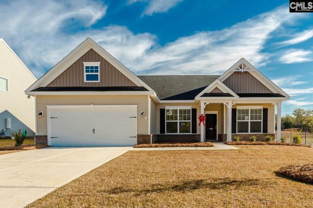 138 Sunny View Lane, Lexington, SC 29073 (MLS #443357) :: EXIT Real Estate Consultants