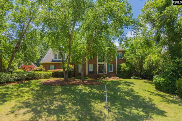 419 W Passage, Columbia, SC 29212 (MLS #449082) :: Home Advantage Realty, LLC