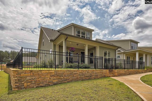306 Coldwater Crossing, Lexington, SC 29072 (MLS #460812) :: EXIT Real Estate Consultants