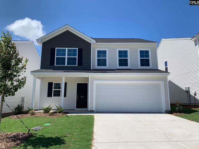 547 Hatteras Drive, Blythewood, SC 29016 (MLS #497710) :: Loveless & Yarborough Real Estate
