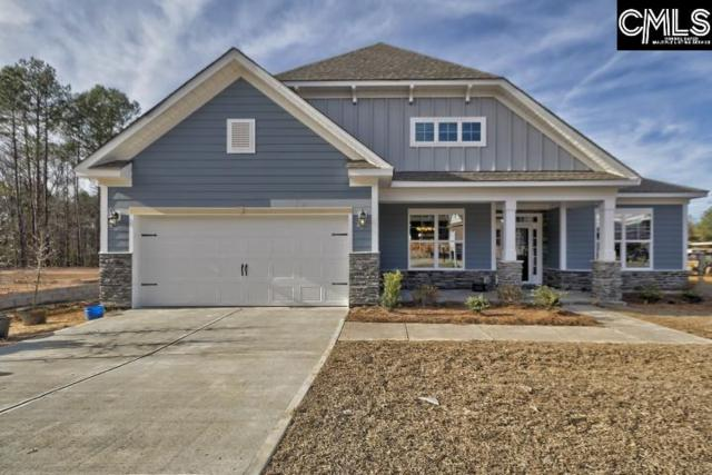 230 Hilton View Court, Chapin, SC 29036 (MLS #442413) :: EXIT Real Estate Consultants