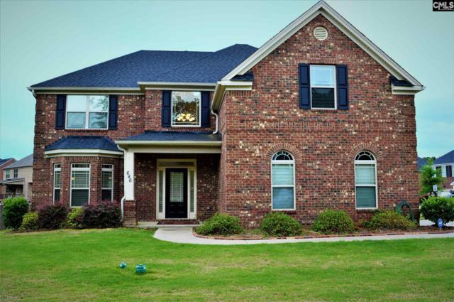 646 Village Market Drive, Chapin, SC 29036 (MLS #466640) :: Home Advantage Realty, LLC