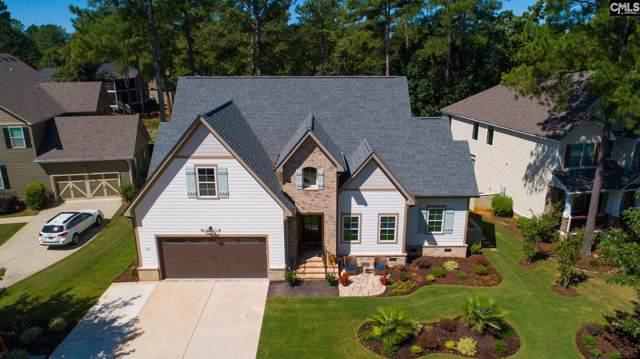 271 Woodlander Drive, Blythewood, SC 29016 (MLS #479047) :: EXIT Real Estate Consultants