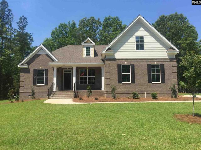 220 Hilton View Court, Chapin, SC 29036 (MLS #442133) :: RE/MAX AT THE LAKE