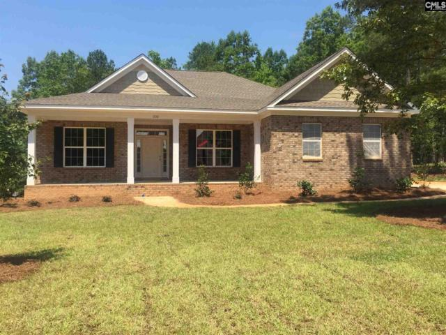 230 Hilton View Court, Chapin, SC 29036 (MLS #442413) :: RE/MAX AT THE LAKE