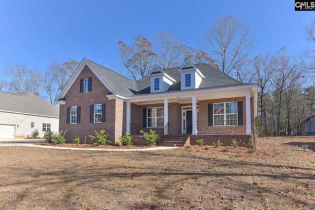 231 Hilton View Court, Chapin, SC 29036 (MLS #449890) :: Home Advantage Realty, LLC