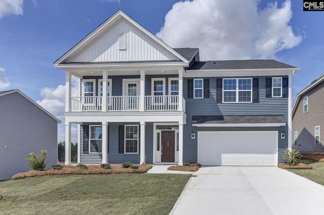 162 Aldergate Drive, Lexington, SC 29073 (MLS #482767) :: The Meade Team