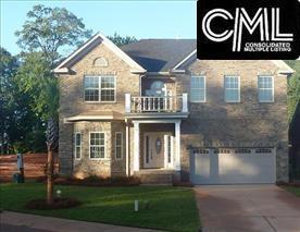 229 Daymark Drive, Chapin, SC 29036 (MLS #420234) :: Home Advantage Realty, LLC