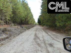 3983 Creekside @ Old Dunbar Road, West Columbia, SC 29170 (MLS #420265) :: Home Advantage Realty, LLC