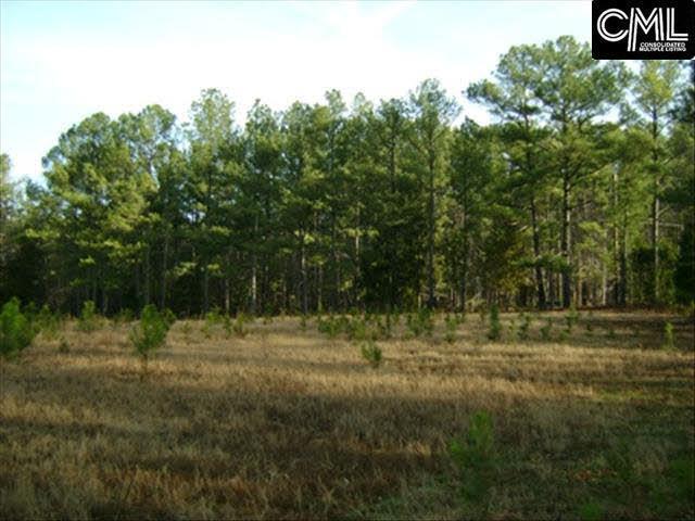 100 Hanlon Drive, Elgin, SC 29045 (MLS #422893) :: Home Advantage Realty, LLC