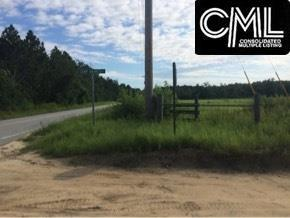 TBD Two Notch Road, Gilbert, SC 29054 (MLS #427319) :: Exit Real Estate Consultants