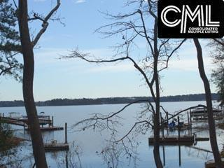 2008 Amicks Ferry Road #56, Chapin, SC 29036 (MLS #428197) :: EXIT Real Estate Consultants