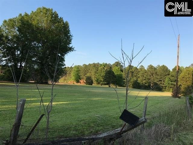 0 Sid Bickley Road, Chapin, SC 29036 (MLS #429025) :: Exit Real Estate Consultants