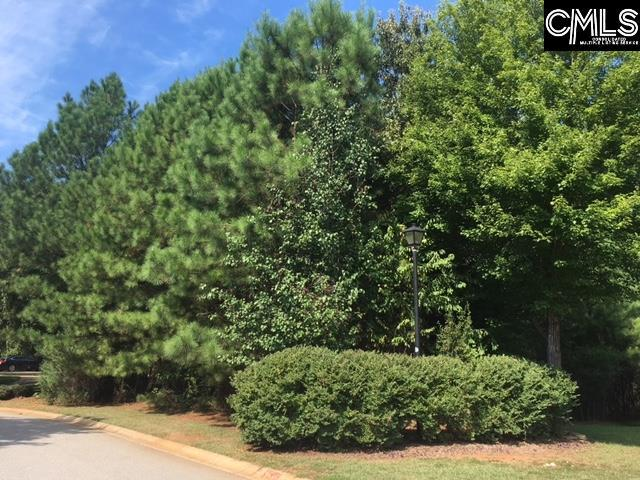 209 Pointe Overlook Drive, Chapin, SC 29036 (MLS #431114) :: Home Advantage Realty, LLC
