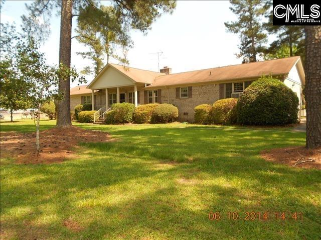 331 Chapin Road, Chapin, SC 29036 (MLS #432922) :: Exit Real Estate Consultants