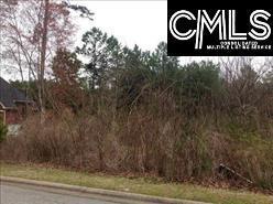 1334 Camping Road, Gilbert, SC 29054 (MLS #434020) :: Exit Real Estate Consultants