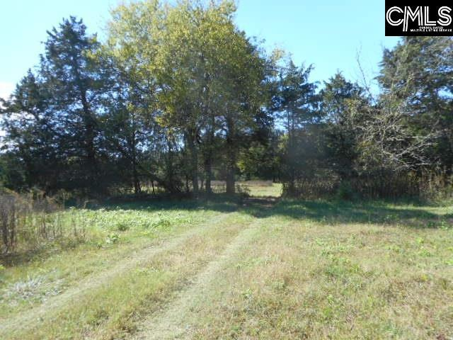 4991 State Hwy 215 N Road, Blair, SC 29015 (MLS #434745) :: Home Advantage Realty, LLC