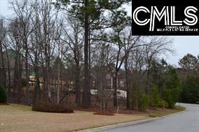 308 Fetterbush Road #118, Elgin, SC 29045 (MLS #435733) :: EXIT Real Estate Consultants