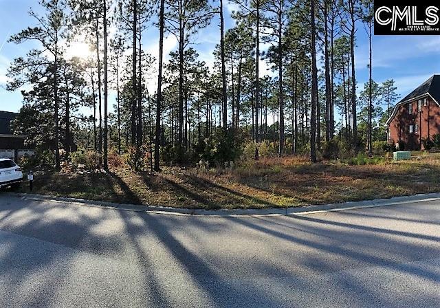 317 Bluestem Drive, Elgin, SC 29045 (MLS #436006) :: EXIT Real Estate Consultants