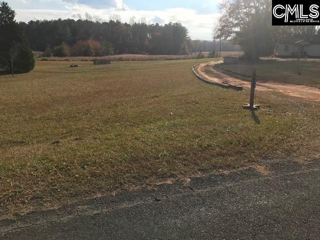 470 Halfacre Road, Newberry, SC 29108 (MLS #437677) :: RE/MAX Real Estate Consultants