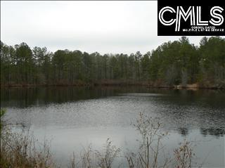 759 Pine Grove Road, Lugoff, SC 29078 (MLS #438003) :: RE/MAX Real Estate Consultants