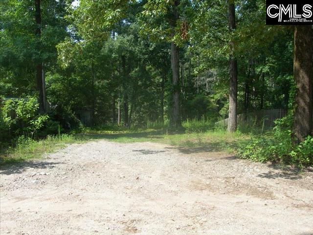 179 Rocky Ridge Road, Leesville, SC 29070 (MLS #438603) :: Home Advantage Realty, LLC