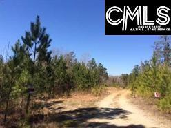 0 Courtland Road, Chapin, SC 29036 (MLS #440063) :: EXIT Real Estate Consultants