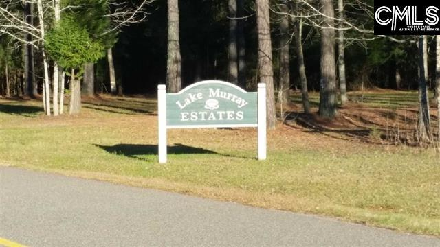0 Scooter Bridge Road, Batesburg, SC 29006 (MLS #440476) :: EXIT Real Estate Consultants