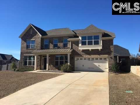 1 Featherfoil Court, Chapin, SC 29036 (MLS #441322) :: Home Advantage Realty, LLC