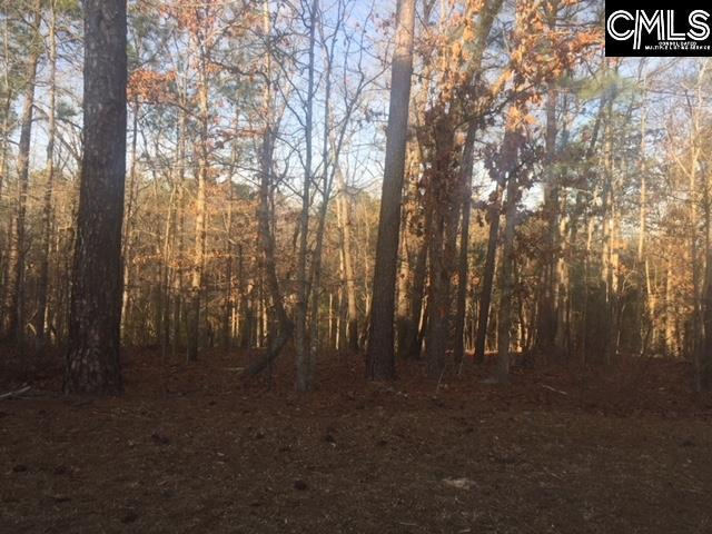 341 Highland Point Drive, Columbia, SC 29229 (MLS #441635) :: RE/MAX AT THE LAKE