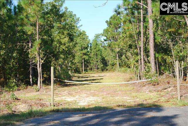 1238 Pine Plain Road, Gaston, SC 29053 (MLS #443500) :: EXIT Real Estate Consultants