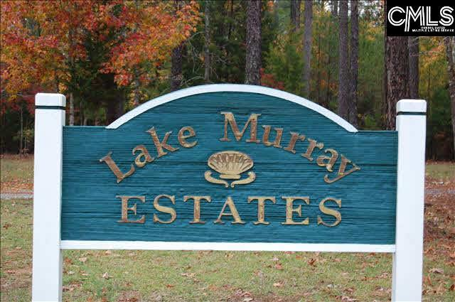 141 Tortoise Trail #10, Batesburg, SC 29006 (MLS #444366) :: EXIT Real Estate Consultants