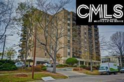 619 King Street #801, Columbia, SC 29205 (MLS #445825) :: EXIT Real Estate Consultants