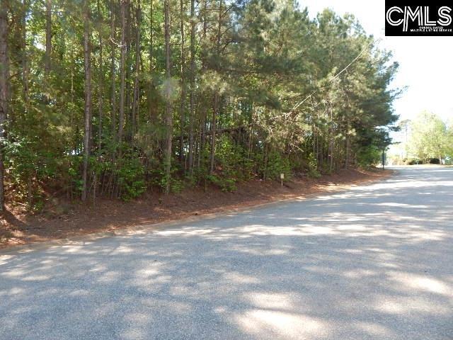 110 Lake Summit Drive, Chapin, SC 29036 (MLS #445920) :: RE/MAX AT THE LAKE