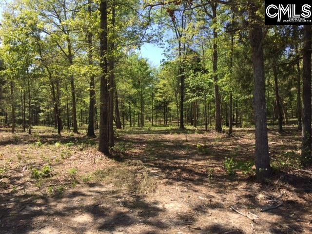0 Amicks Ferry Road, Chapin, SC 29036 (MLS #446133) :: Home Advantage Realty, LLC