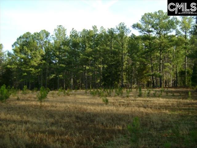 0 Clemson Road, Columbia, SC 29229 (MLS #446180) :: Home Advantage Realty, LLC
