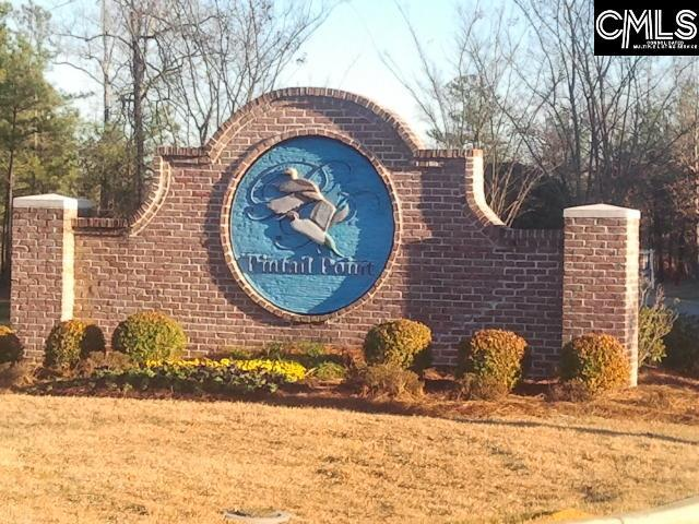132 Pintail Lake Drive #95, Gilbert, SC 29054 (MLS #446286) :: EXIT Real Estate Consultants