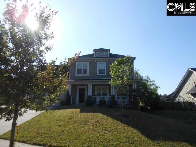 546 Foxstone Drive Drive, Chapin, SC 29036 (MLS #447929) :: EXIT Real Estate Consultants