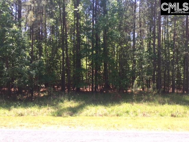0 Woodside Drive #45, Winnsboro, SC 29180 (MLS #447945) :: RE/MAX AT THE LAKE