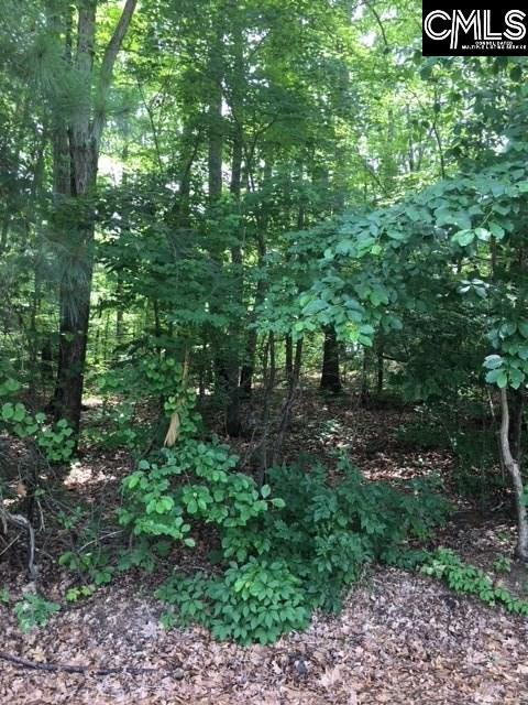 0 Newberry Drive Lot 4, Chapin, SC 29036 (MLS #448017) :: The Olivia Cooley Group at Keller Williams Realty