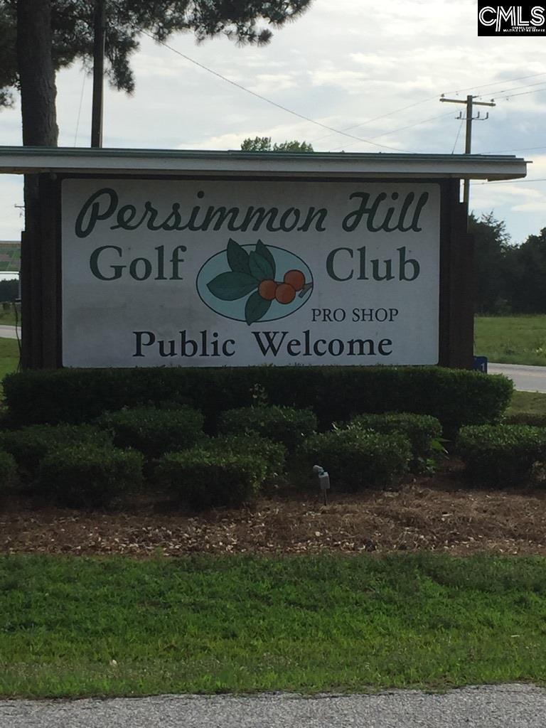 0 Persimmon Drive - Photo 1