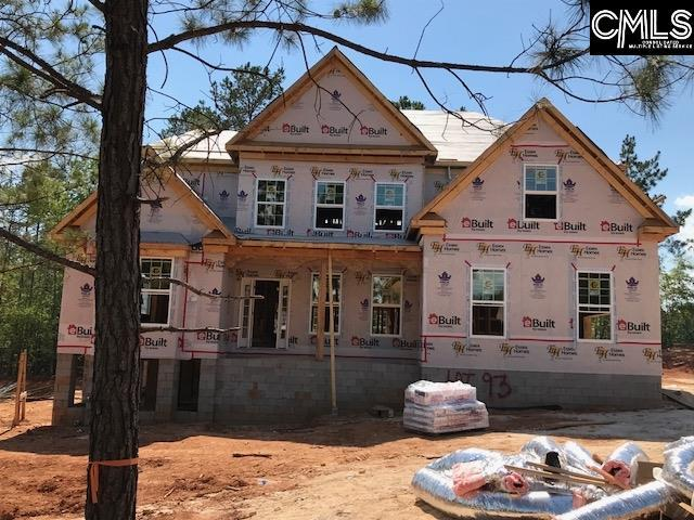 595 Wild Hickory Land Ph 008 #93, Blythewood, SC 29016 (MLS #450218) :: The Olivia Cooley Group at Keller Williams Realty