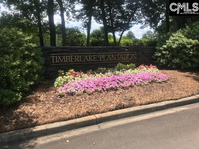 0 Timberlake Drive, Chapin, SC 29036 (MLS #450353) :: EXIT Real Estate Consultants