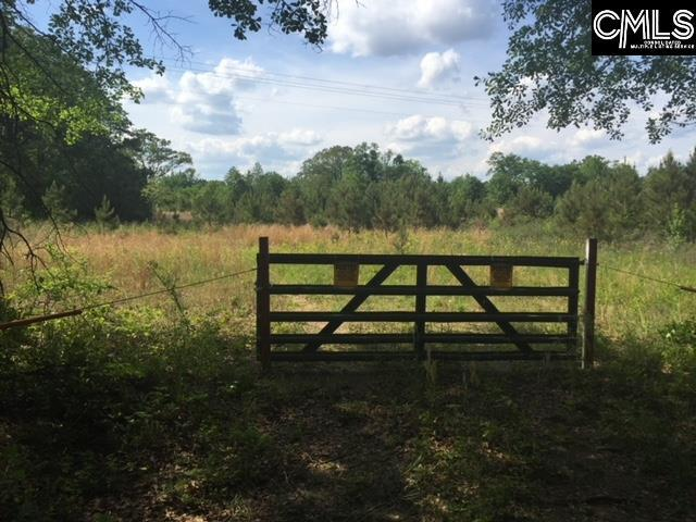 3022 Pine Plain Road, Swansea, SC 29160 (MLS #452916) :: Home Advantage Realty, LLC