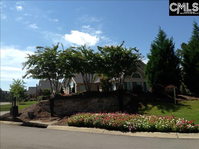 120 Peach Grove Circle, Elgin, SC 29045 (MLS #453874) :: EXIT Real Estate Consultants