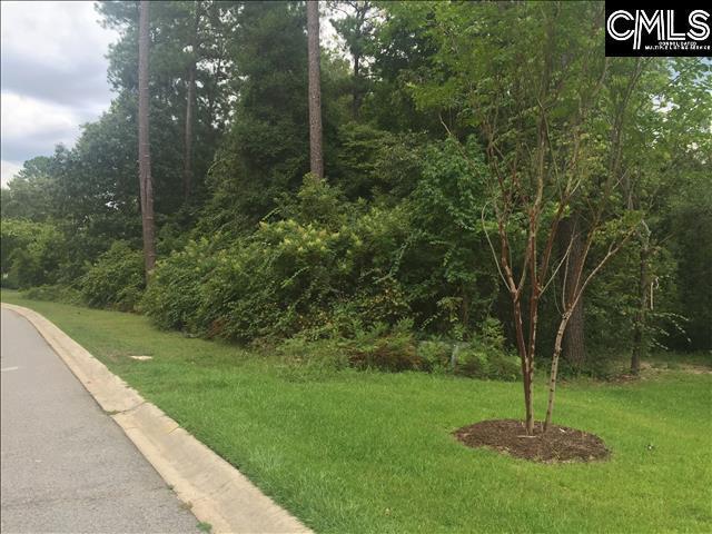 204 Deer Crossing Road, Elgin, SC 29045 (MLS #455992) :: Loveless & Yarborough Real Estate