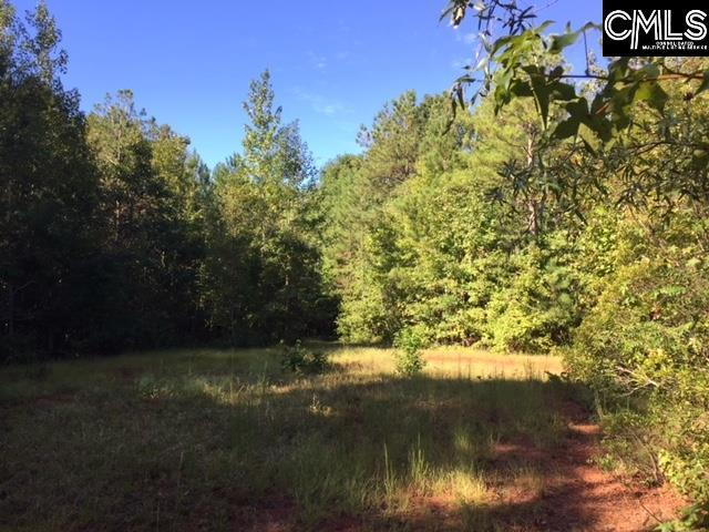 1227 Sease Road, Ridgeway, SC 29130 (MLS #456575) :: RE/MAX AT THE LAKE